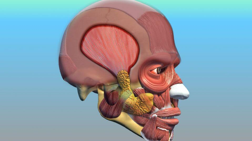 Lengthening Temporalis Myoplasty (MAT)
